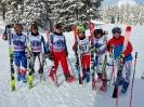 Alpinrennen  2018_1