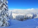 2019 - Junge Erwachsene Skifreizeit_19
